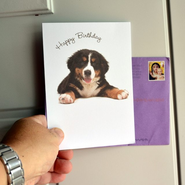 Buying Birthday Cards Online Heres What to Put in Them – Buying Birthday Cards Online